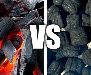 Lump Charcoals vs. Briquettes